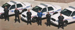 Patrol Officers by their cars